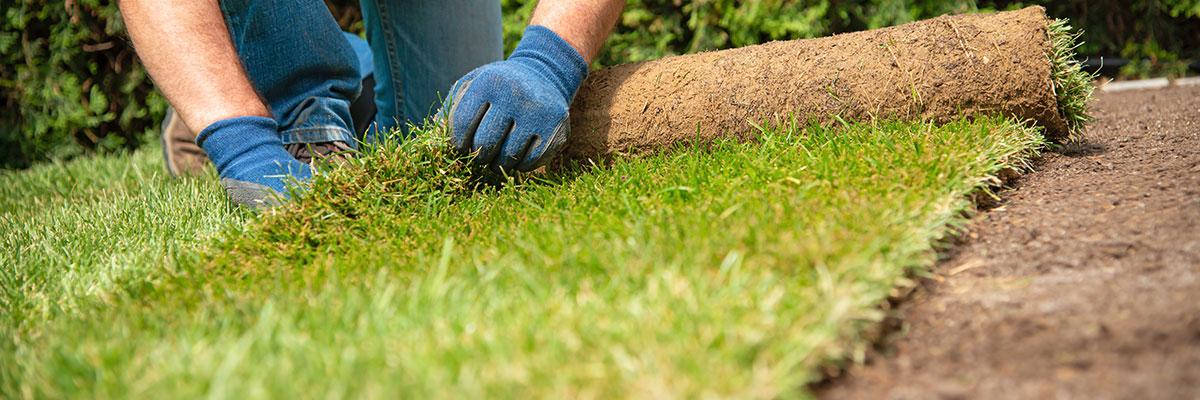Black Diamond Landscaping Services
